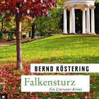 Buchcover Falkensturz, Bernd Köstering